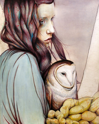 michael shapcott - the girl and the owl